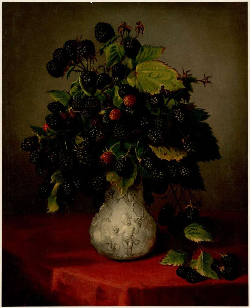 Blackberries in a Vase